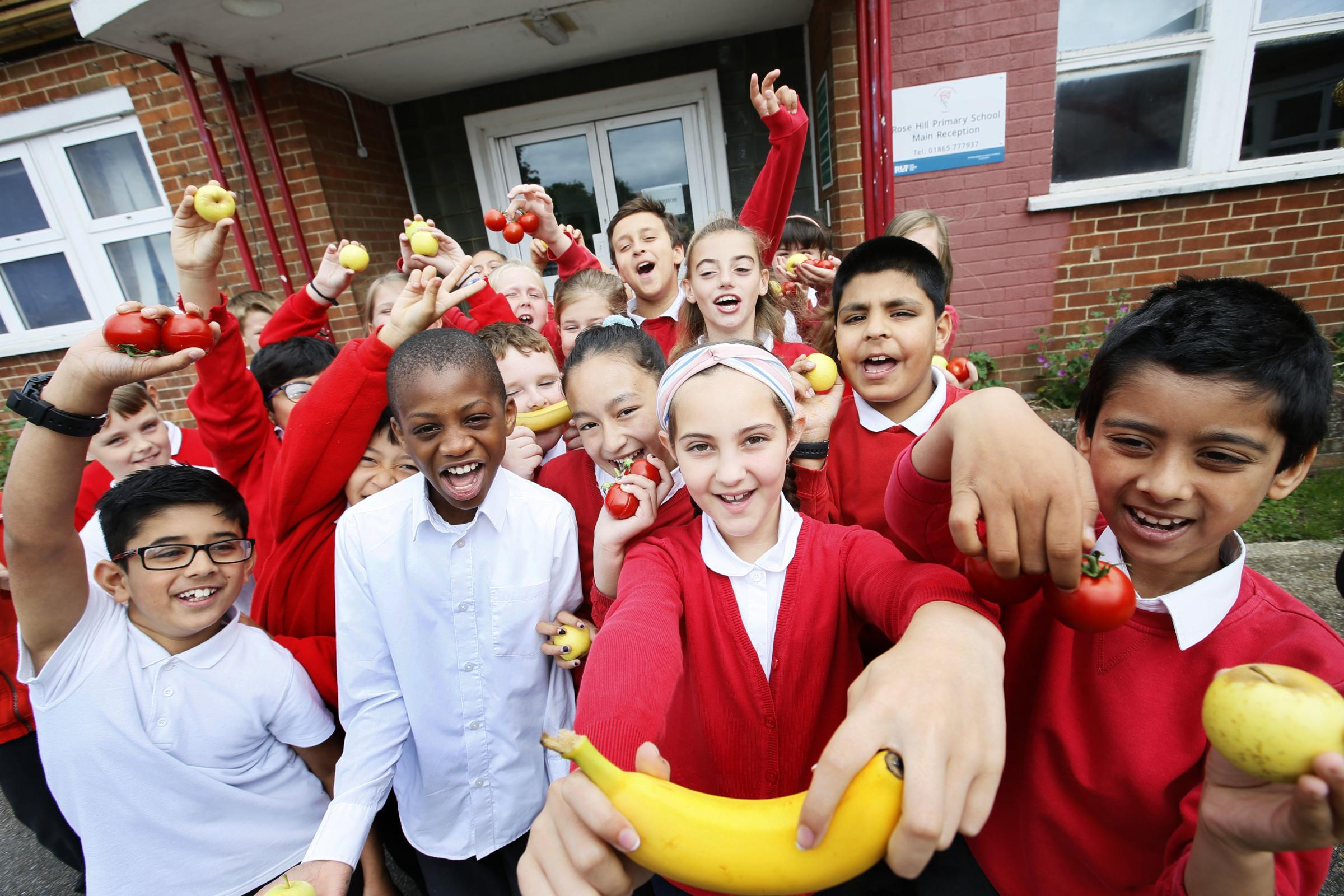 Rose Hill Primary School runs healthy packed lunch contest
