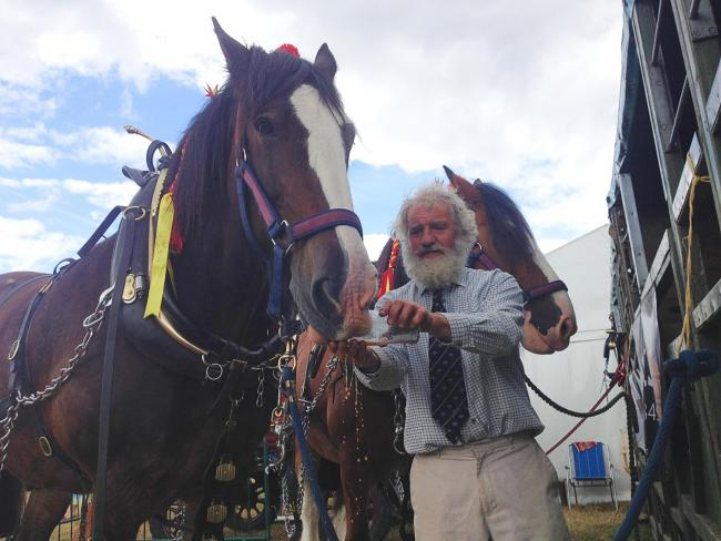 Hook Norton Brewery drayman Roger Hughes gives Roger the shire horse a little refresher after a hard day's work.