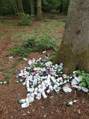 The huge pile of litter left under a tree