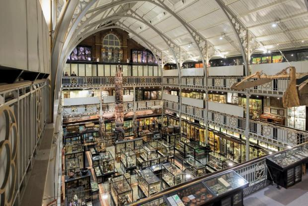 The Pitt Rivers Museum Oxford