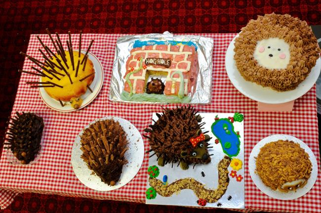 Hedgehog Day Bake off planned for Witney event October 13