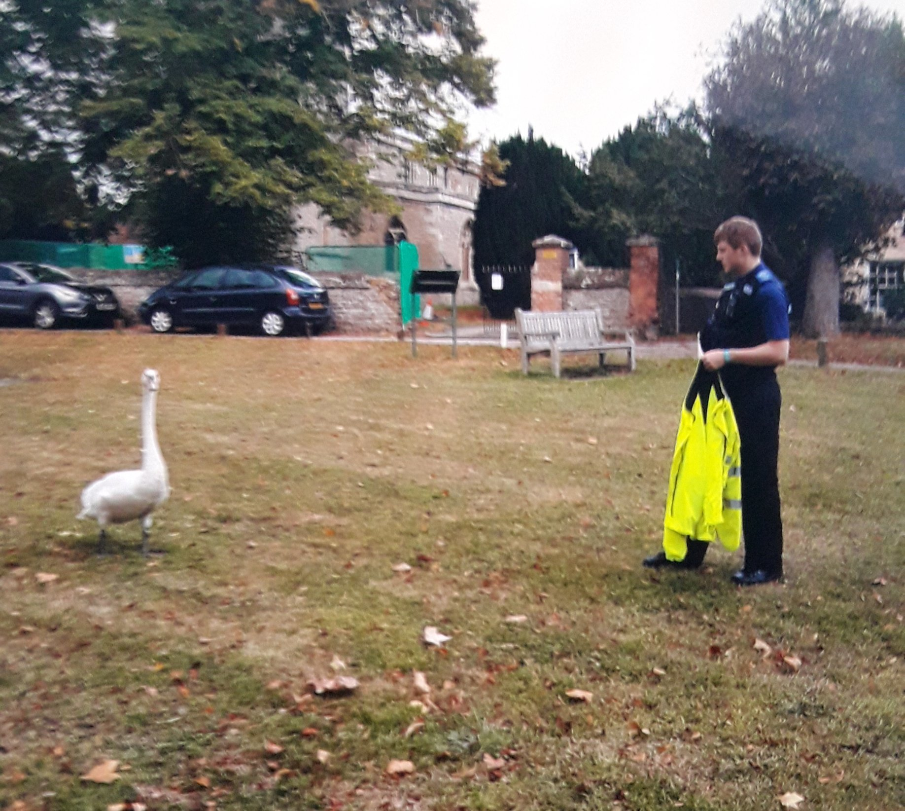 Hot Fuzz moment as police catch swan in Sutton Courtenay