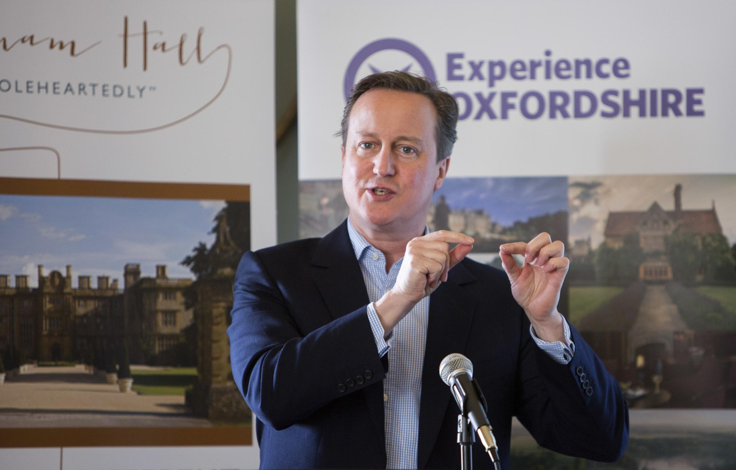 GRAY MATTER: Why I won't be writing about David Cameron's book