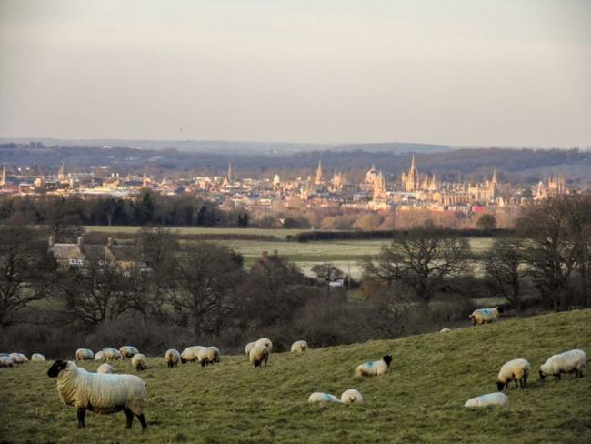 A view of Oxford from Boars Hill. Picture: Roy Pyniger.