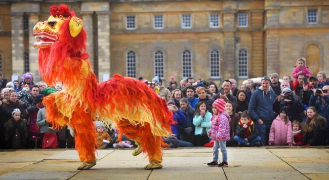 Chinese New Year celebrations at Blenheim PAlace in 2018 Picture Richard Cave
