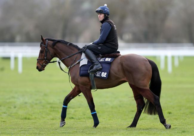 Tiger Roll on the gallops at Cheltenham earlier this week  Picture: Andrew Matthews/PA Wire