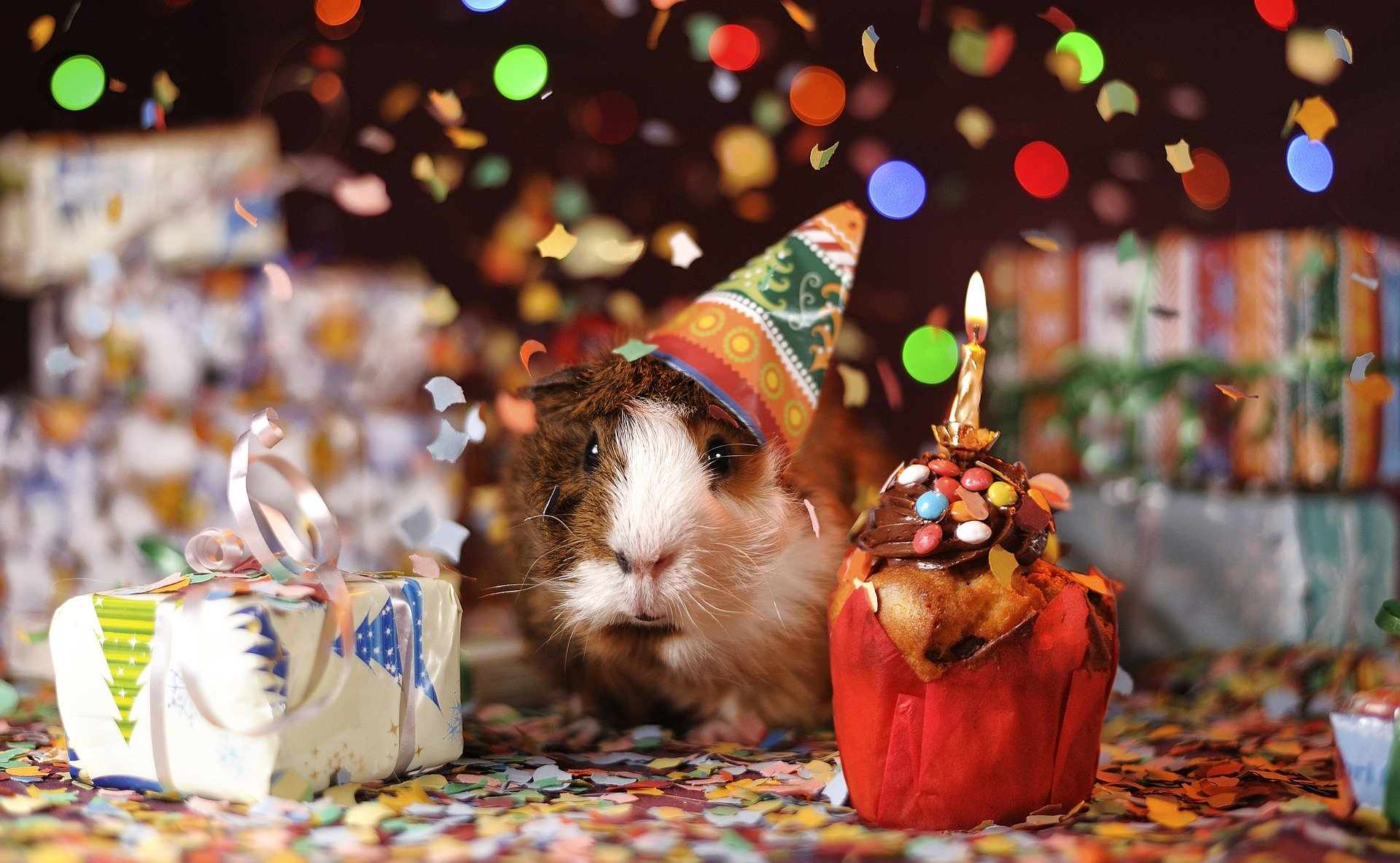 Wish A Happy Birthday To Someone Celebrating Their Birthday During The Coronavirus Shutdown Oxford Mail
