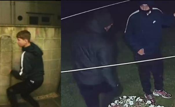 CCTV images released after spate of shed break-ins