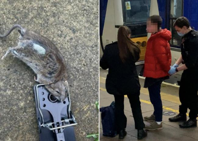 Left to right: A photo of a rodent caught in the Cowley property on November 9 last year and a photo of an ACORN Oxford member arrested at yesterday's demonstartion outside Ryeview