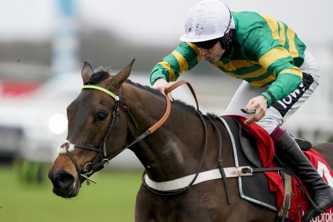 Epatante is fancied to retain his Champion Hurdle crown Picture: Alan Crowhurst/PA Wire
