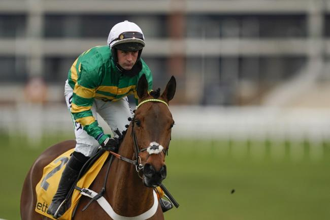 Champ can win the Cheltenham Gold Cup. Picture: PA Wire