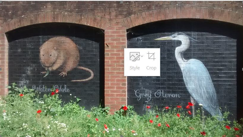 Frenchay Road murals