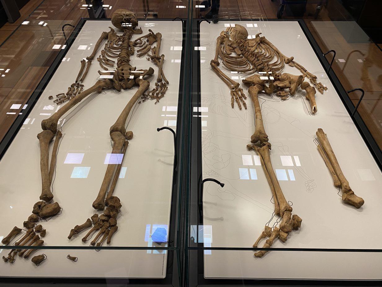 Oxfordshire Viking massacre victim reunited with relative skeleton in Denmark