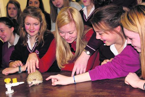 Nicola Blackwood meets a hedgehog at St Helen and St Katharine School
