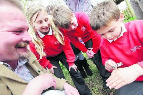 Pupils explore nature's garden