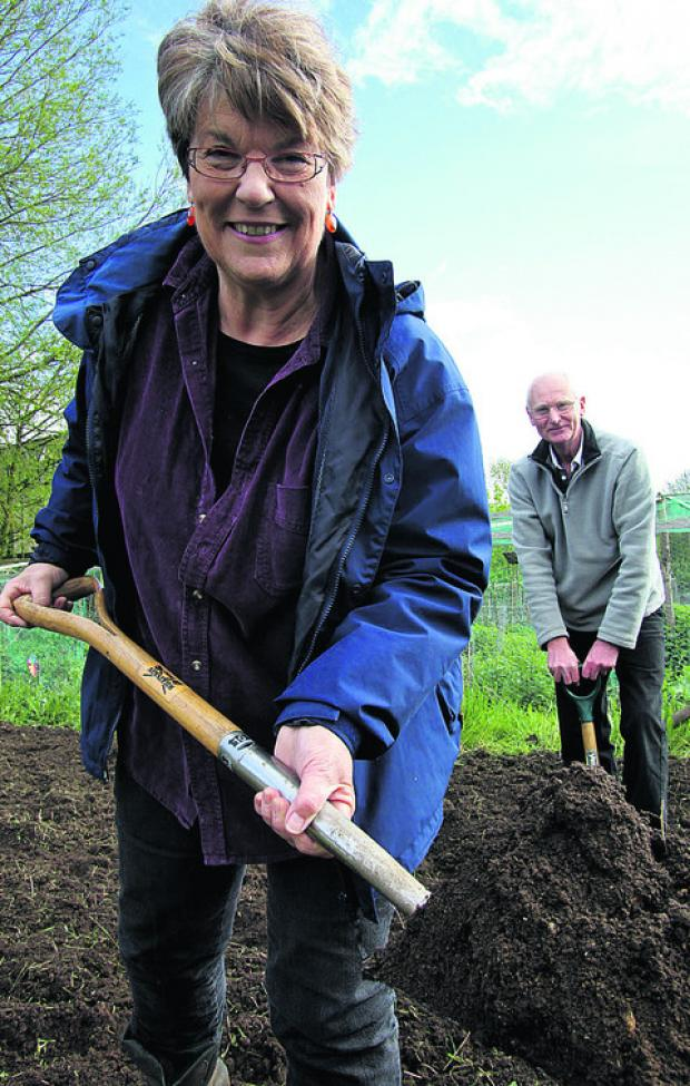 Witney Allotments Association secretary Maggie Perrin, front, and chairman Andy Howells at the Lakeside allotments in Ducklington Lane. Picture: OX51873 Ric Mellis