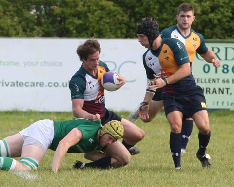 Olly Rees (left) and Tim Knapp start in Oxford Harlequins' back row