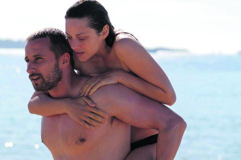 RUST AND BONE: 'Sex scenes are sweaty, frenetic and almost animalistic '