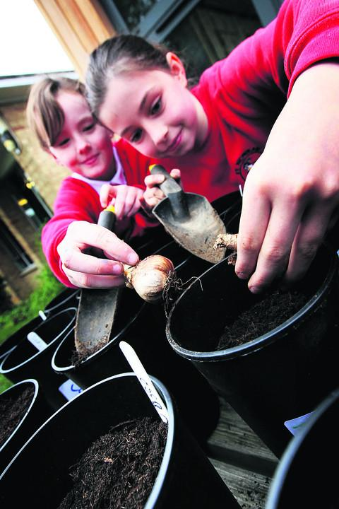 Zoe Coombs, 10, right, and Meriel Allen, 10, left, plant the bulbs