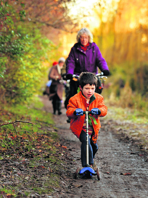 Voles scupper plans for towpath revamp
