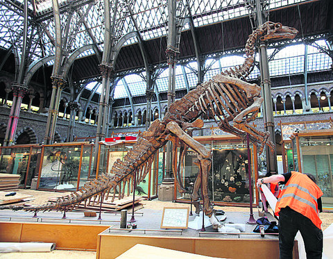 Museum's Jurassic exhibits protected for roof project