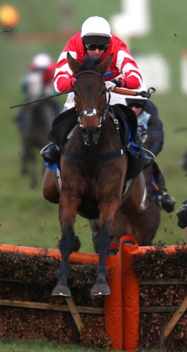 Coneygree, who holds entries at Cheltenham and Doncaster