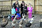 Manager Andrea Leonard, left, with children, from left, Cerys Smyth, three, Ellis Payne, three, Christian Hayes, four, Olivia Martin, three, and nursery nurse Lindsay Humphreys
