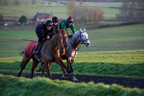 From left – Thisgunsforhire (Tony McCoy), Dunlough Bay (Luke Watson) and Llama Farmer (Danny Hannig) on the gallops at Paul Webber's Mollington stables, near Banbury Picture: Tudor Photography