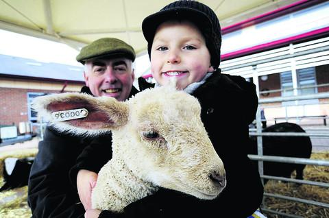 Farmer Liam Moore introduces one of his lambs to Willowcroft Community School pupil Harley Sear, four