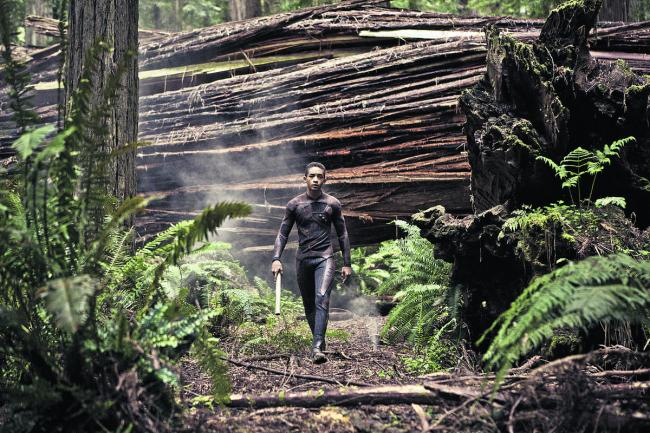 AFTER EARTH: 'There are some lovely, tender moments in Shyamalan's script, co-written by Gary Whitta, that draw heavily on the natural chemistry between the leads