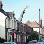 Oxford Mail: The Headington shark