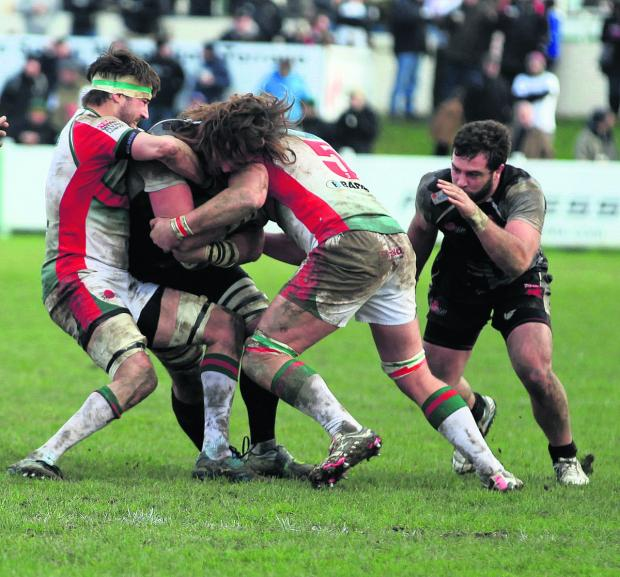 Oxford Mail: London Welsh lock Ian Nimmo finds it hard going at Plymouth Albion – an experience Justin Burnell wants his players to learn from