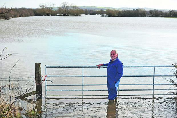 Oxford Mail: Brian Franklin on land at Moorlands Farm in Murcott, near Kidlington, which has been swamped since before Christmas