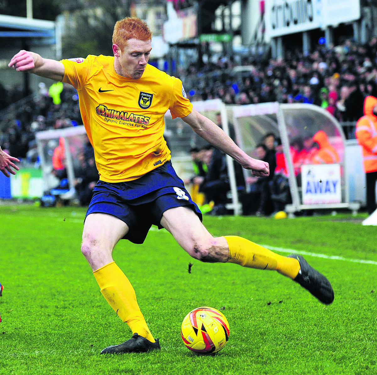 Dave Kitson could feature against Fleetwood today