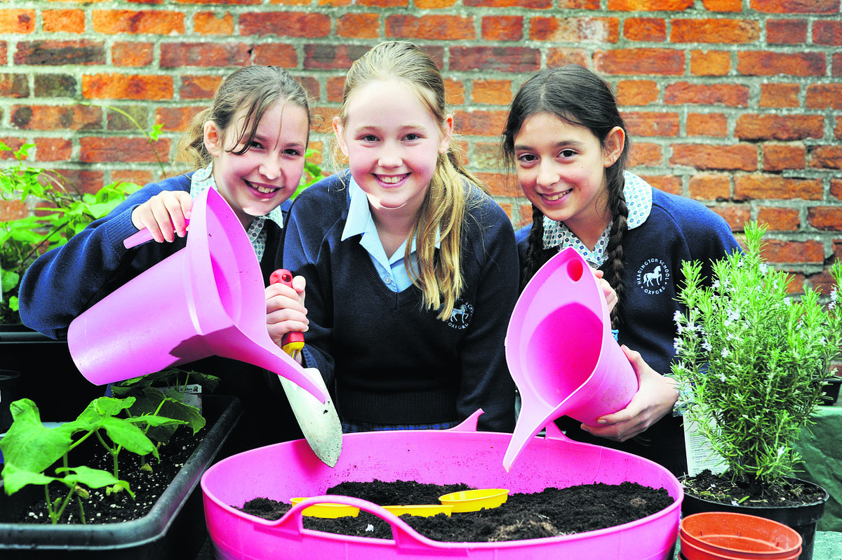 Growing their poppy seeds at Headington Prep School are pup