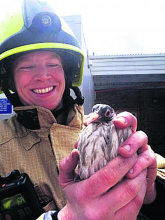 Firefighter Ellie Hathaway with the pigeon