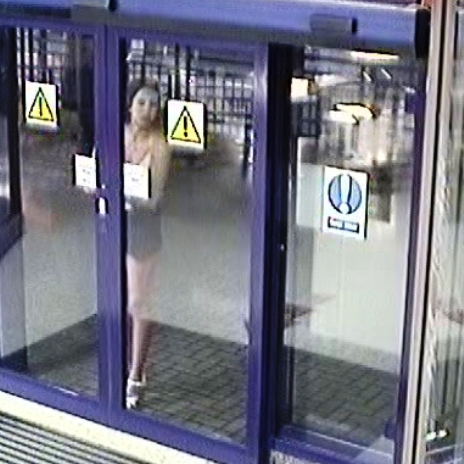 Police hunting woman who cracked glass door a