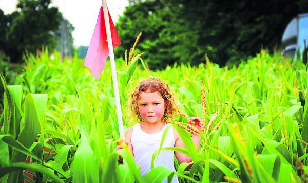 Amber Hall, four, at the opening of Millets Farm Centre maize maze