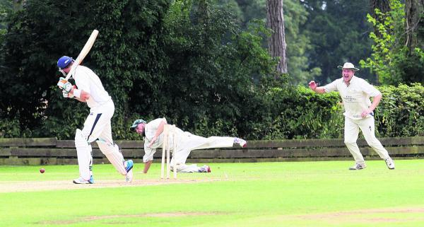 Shipton-under-Wychwood fielders show their delight as Joe White is bowled for 21 by Anupam Sanklecha