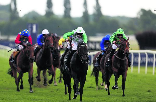 Music Master and Fergus Sweeney sget up to win the Al Basti Equiworld Hackwood Stakes at Newbury on Saturday