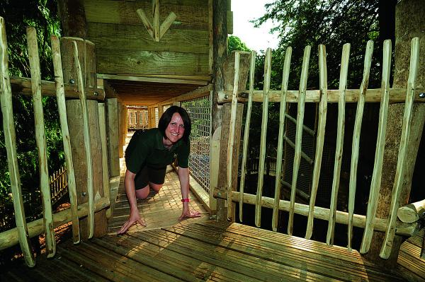 Demonstrating Cotswold Wildlife Park's newly opened Skymaze adventure