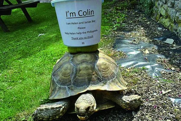 MONEY MISSION: Colin the tortoise raised money in memory of Helen Thompson at a fete at The Plough, Long Wittenham