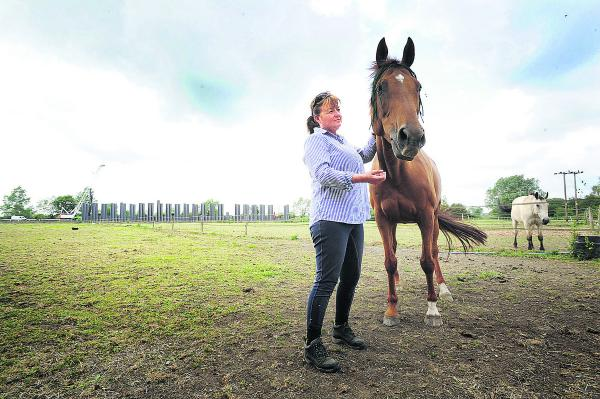 Rail link could force stables to close down