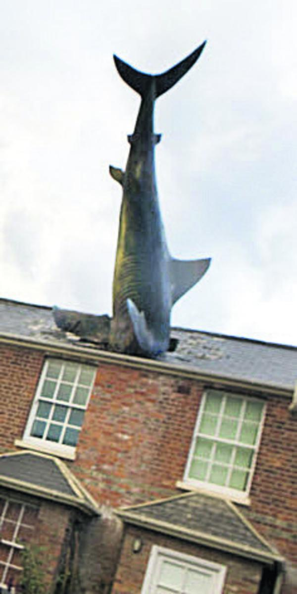 Headington's iconic shark