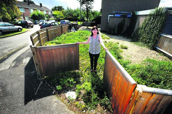 Rebecca Lee says the fenced-off land next to her home could be used for parking