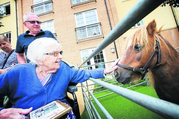 ean Atkinson, 88 and her son, Phil, meet Winnie the Shetland pony