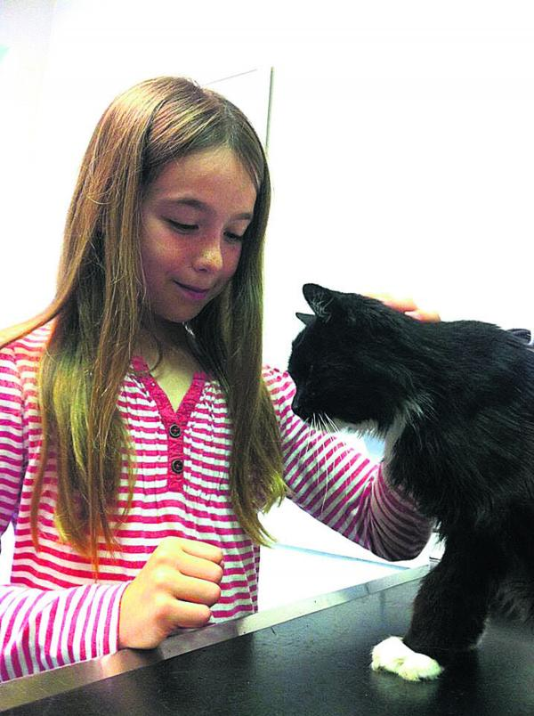 FOUND: Georgia, 10, is reunited with Morgan the cat who disappeared 10 years ago