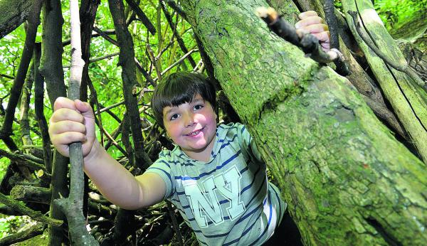 Aden Alhamis, eight, builds a den during the Cutteslowe Community Centre summer playscheme trip to the Earth Trust at Little Wittenham Picture: OX69398 Simon Williams