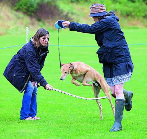 PRIZE POOCH: Caroline Nevile, right, and assistant Fiona Mates with George competing in the dog talent show
