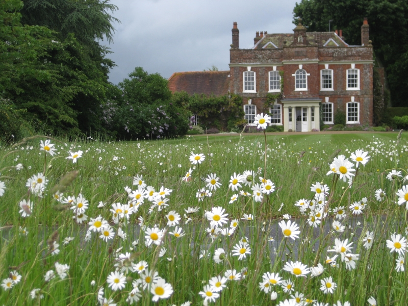 The Old Rectory Open Garden for the National Garden Scheme Charities